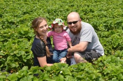 Picking strawberries at Carter's Farm in Eagle Springs