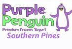 frozen yogurt southern pines nc